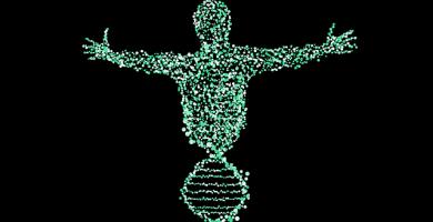 Engenharia genética: como células tronco ajudam na reconstrução óssea