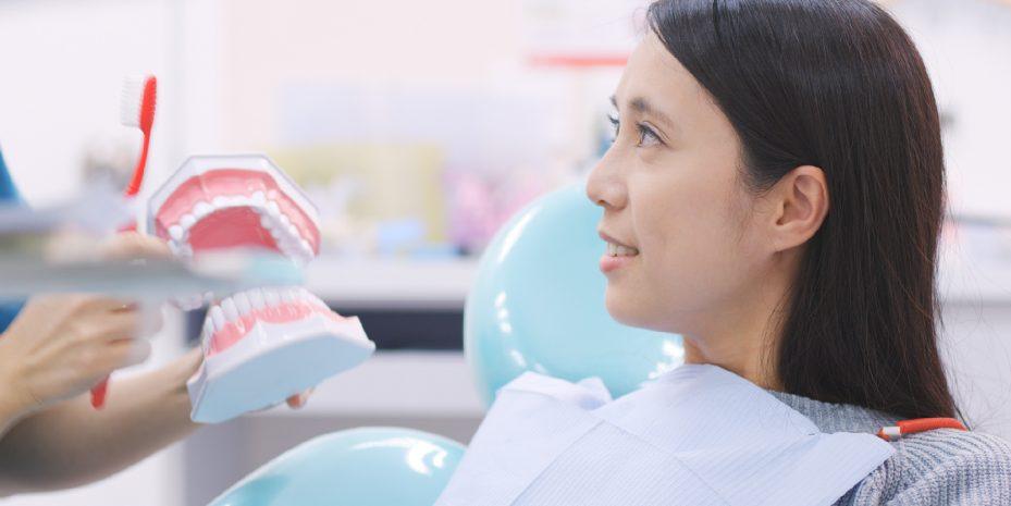 mulher olhando em direção de sua dentista, que esta segurando um modelo de arcada dentária, ensinando como realizar a escovação