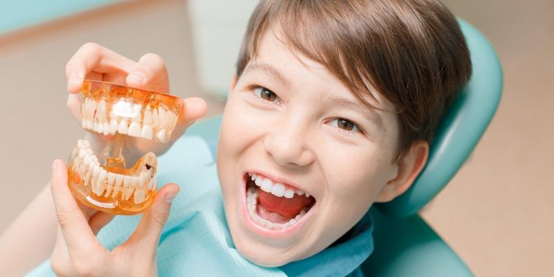 menino em uma clínica de odontologia para crianças segurando uma dentadura de brinquedo